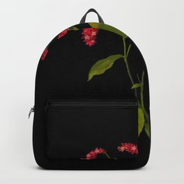 Polygonum Orientale Mary Delany Floral Flower Paper Collage Delicate Vintage Black Background Backpack