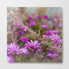 Algarve Flowers Metal Print