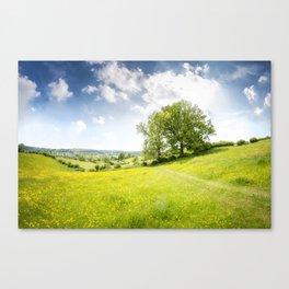 Idyllic Cotswold Summer Landscape Canvas Print