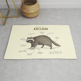 Anatomy of a Raccoon Rug