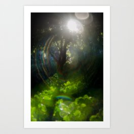 Rainbow Flare (Magic Garden Series) Art Print