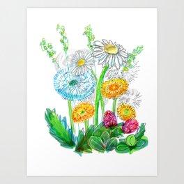 dandelion blowballs Art Print
