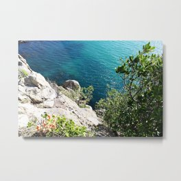 The Mount Metal Print