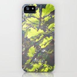 Leaving Sugar Creek iPhone Case
