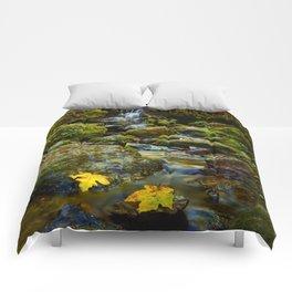 Autumn At Trillium Comforters