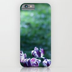 green and purple melody Slim Case iPhone 6s