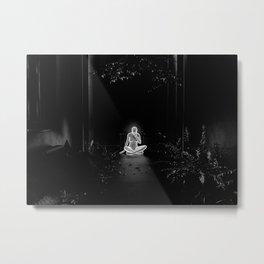 Home II Metal Print