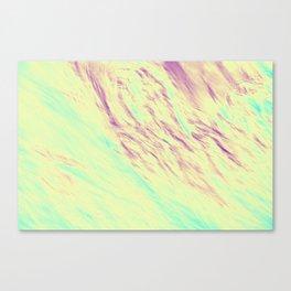 533 Canvas Print