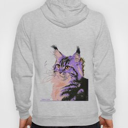 Maine Coon Cat Purple/Peach/Black Hoody