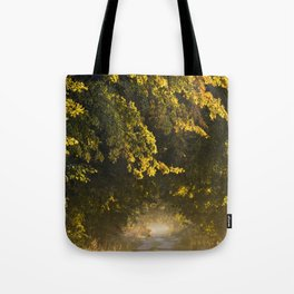 Alley of lime trees in Autumn #2 Tote Bag