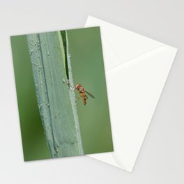 Dragon flies and one insect Stationery Cards