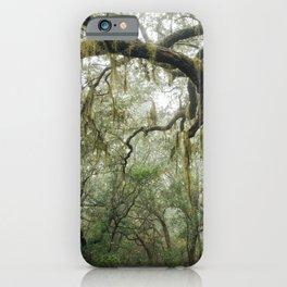 Florida Forest Landscape iPhone Case