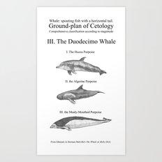 III. The Duodecimo Whale Art Print