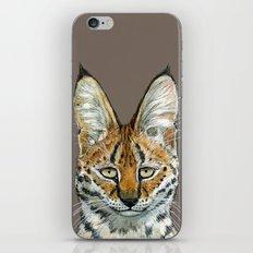 SERVAL BIG CATS A071 iPhone & iPod Skin