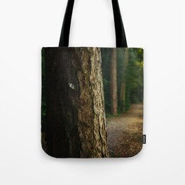 Tree in a forest Tote Bag