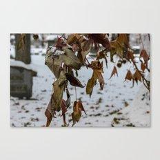 Overhang Canvas Print