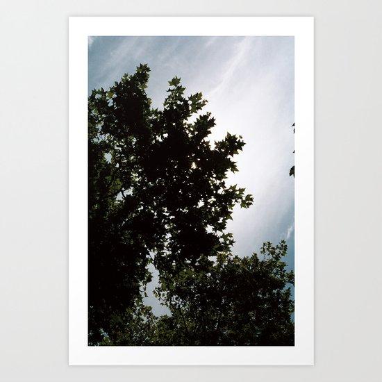 great sky Art Print