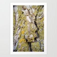 Trippy Bark Art Print