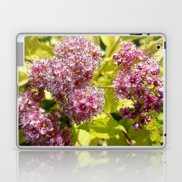 Lilac flowers Laptop & iPad Skin