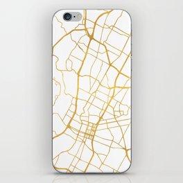 AUSTIN TEXAS CITY STREET MAP ART iPhone Skin