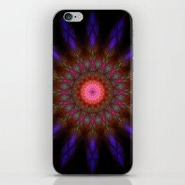 Dreamweaver iPhone Skin