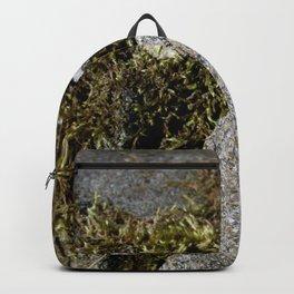 Nature's Mossenger Backpack
