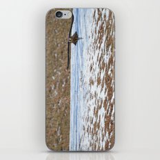 Peregrine Falcon iPhone Skin