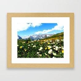 Summer in the Alps Framed Art Print
