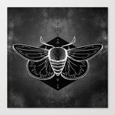 Moth Vignette Canvas Print