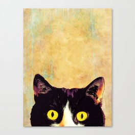 hidden cat 1 Canvas Print