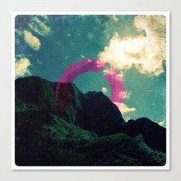 VISA 07 Canvas Print