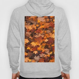 Fall Foliage Hoody