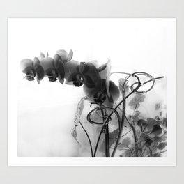 Flowers in black Art Print