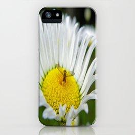 Bee Daisy iPhone Case