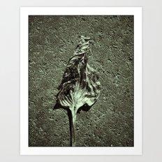 'HOSTA' Art Print