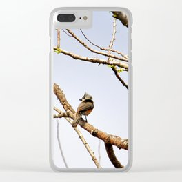Perched Tufted Titmouse Clear iPhone Case