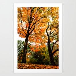 Fall - Beautiful couple Art Print