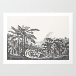 Palms and Mountain Art Print