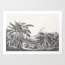 Palms and Mountain Art Print