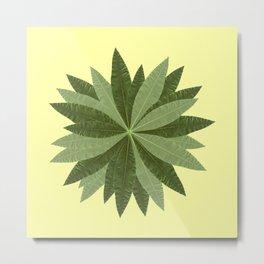 Money Tree Leaves Circle Metal Print