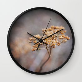 Dried Up Wall Clock