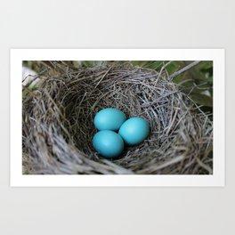 New beginnings nesting Art Print