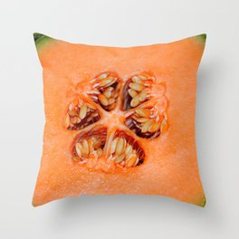 Cantalope Throw Pillow
