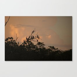 Sunrise On The Amazon River Peru Canvas Print