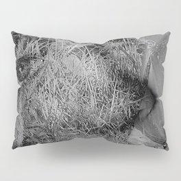 Mother Earth Pillow Sham