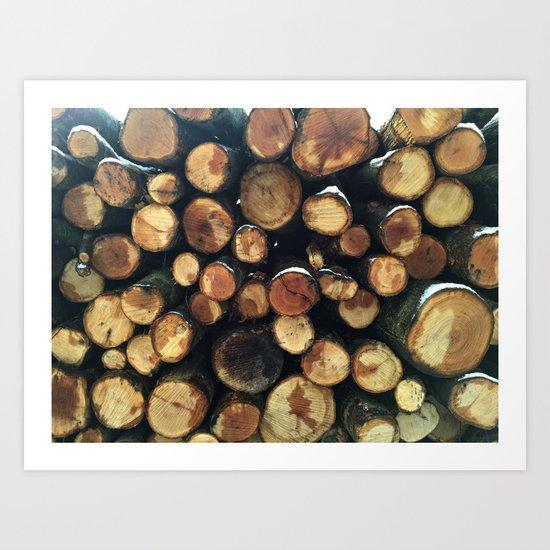 Pile of felled tree trunks Art Print