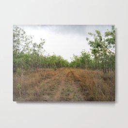 Dingo Camouflage  Metal Print