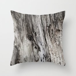 WALL OF DECAY Throw Pillow