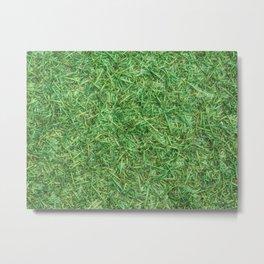grass lawn texture Metal Print