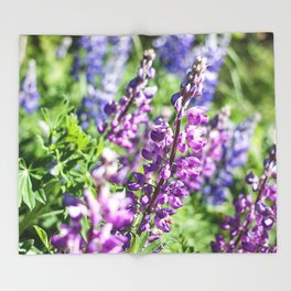 Field of Lupines Photography Print Throw Blanket